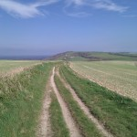 South Downs Way looking towards Chanctonbury Ring